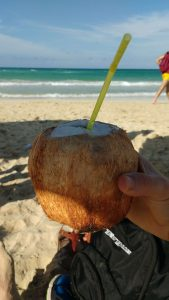Coconut by the beach